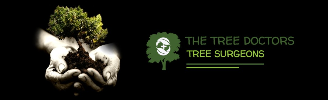 The Tree Doctors - Tree Surgeons - Tree Surgery